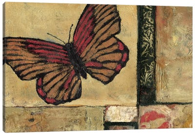 Butterfly in Border I Canvas Art Print