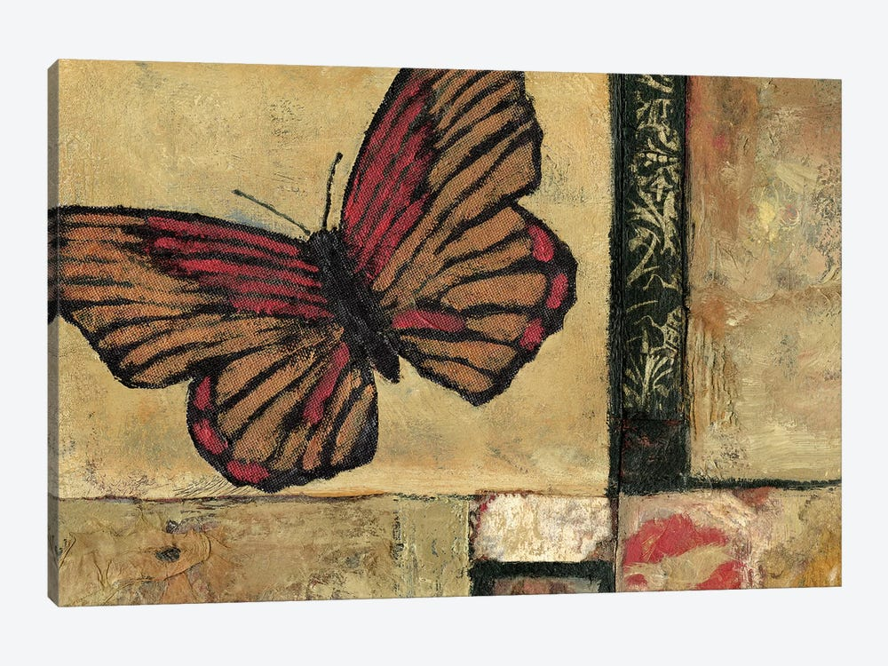 Butterfly in Border I by Judi Bagnato 1-piece Canvas Wall Art