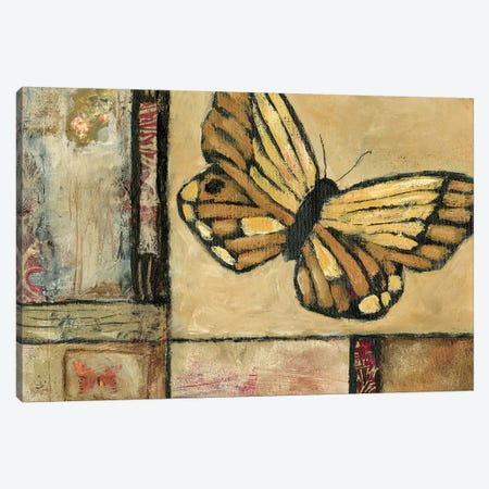 Butterfly in Border II Canvas Print #JBA29} by Judi Bagnato Canvas Artwork