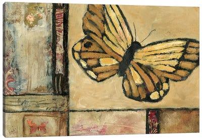 Butterfly in Border II Canvas Art Print