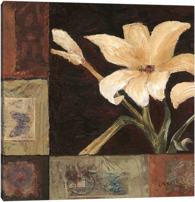 Magnolia Breeze I Canvas Art Print