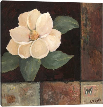 Magnolia Breeze II Canvas Art Print