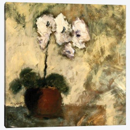 Orchid Textures II Canvas Print #JBA35} by Judi Bagnato Canvas Wall Art