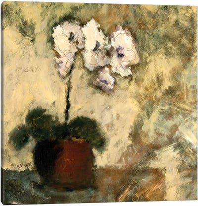 Orchid Textures II Canvas Art Print