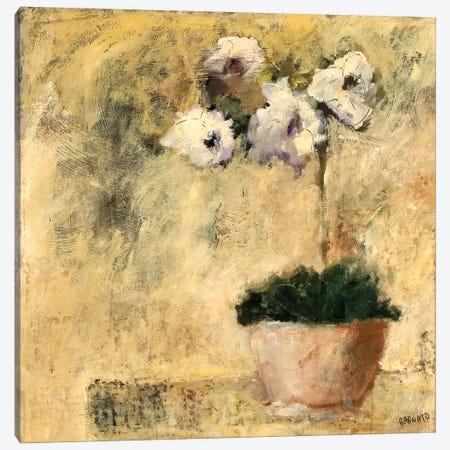 Orchid Textures III Canvas Print #JBA36} by Judi Bagnato Canvas Art