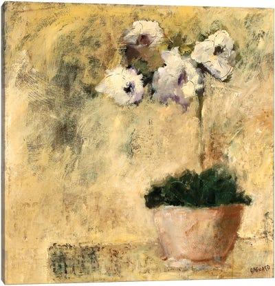 Orchid Textures III Canvas Art Print