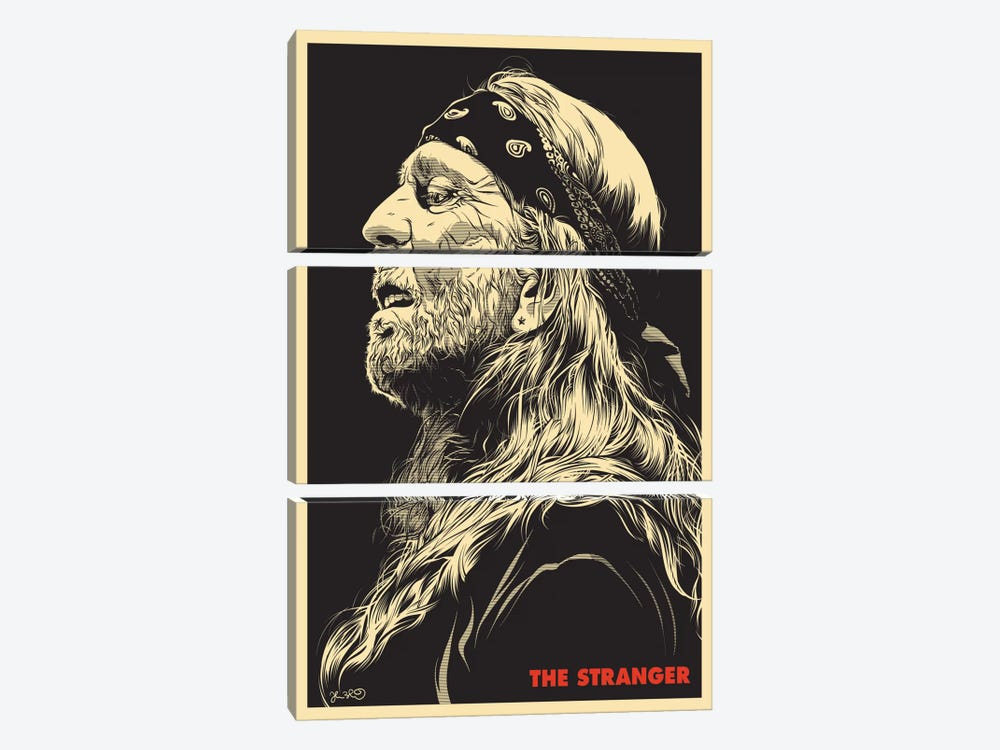 The Stranger: Willie Nelson by Joshua Budich 3-piece Canvas Art Print