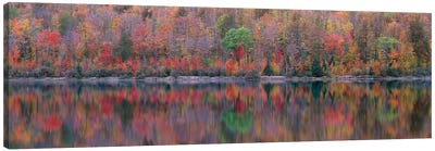 Upson Lake Reflection Canvas Art Print