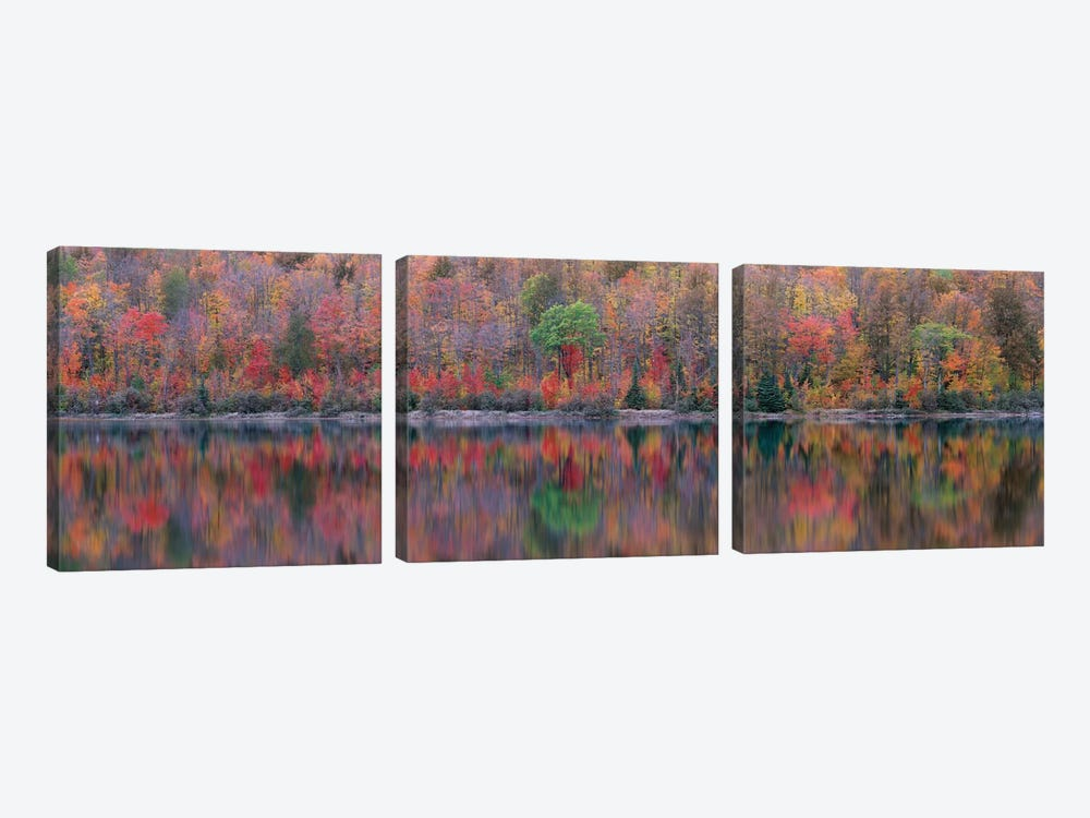 Upson Lake Reflection by Jim Becia 3-piece Canvas Print
