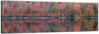 Upson Lake Reflection Canvas Art Print