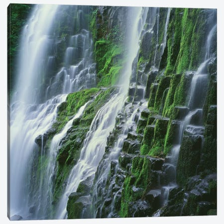 OR, Willamette NF. Three Sisters Wilderness, Lower Proxy Falls displays multiple cascades Canvas Print #JBG13} by John Barger Art Print