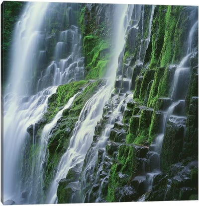 OR, Willamette NF. Three Sisters Wilderness, Lower Proxy Falls displays multiple cascades Canvas Art Print