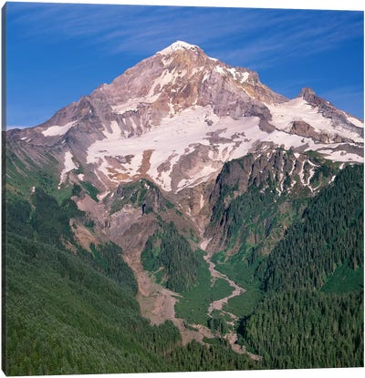 Oregon. Mount Hood NF, Mount Hood Wilderness, west side of Mount Hood and densely forested slopes Canvas Art Print