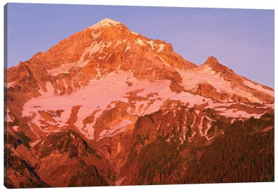Oregon. Mount Hood NF, Mount Hood Wilderness, west side of Mount Hood reddens at sunset. Canvas Art Print