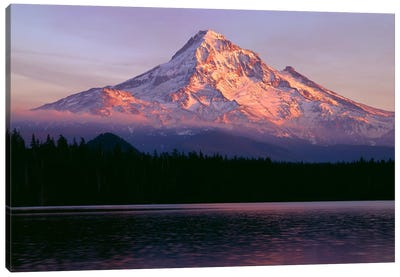 Oregon. Mount Hood NF, sunset light reddens north side of Mount Hood with first snow of autumn Canvas Art Print