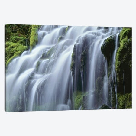 USA, Oregon, Willamette National Forest, Three Sisters Wilderness, Upper Proxy Falls Canvas Print #JBG1} by John Barger Canvas Artwork