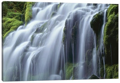 USA, Oregon, Willamette National Forest, Three Sisters Wilderness, Upper Proxy Falls Canvas Art Print
