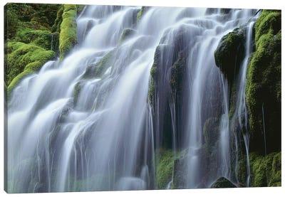 USA, Oregon, Willamette National Forest, Three Sisters Wilderness, Upper Proxy Falls Canvas Art Print