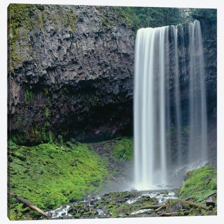 Oregon. Mount Hood NF, Tamanawas Falls with moss-covered rocks at it's base is formed Canvas Print #JBG20} by John Barger Canvas Artwork