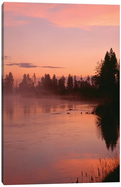 USA, Oregon, Deschutes National Forest. Fog hovers above the Deschutes River at sunrise. Canvas Art Print