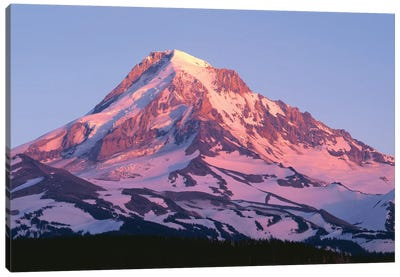 USA, Oregon, Mount Hood National Forest. Sunset light on north side of Mound Hood in early summer. Canvas Art Print