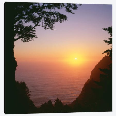 USA, Oregon. Oswald West State Park, summer sunset viewed from below Neahkanie Mountain. Canvas Print #JBG33} by John Barger Canvas Print