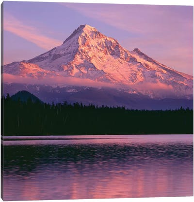 OR, Mount Hood NF. Sunset light reddens north side of Mount Hood with first snow Canvas Art Print
