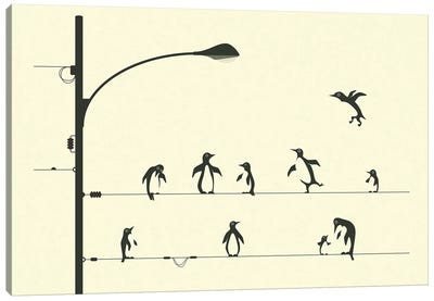 Penguins On A Wire Canvas Art Print