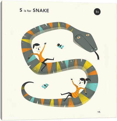 S Is For Snake II Canvas Art Print