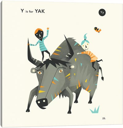 Y Is For Yak II Canvas Art Print