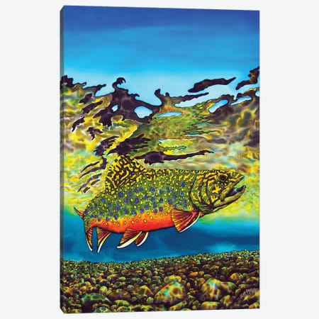 Brook Trout Canvas Print #JBT10} by Daniel Jean-Baptiste Canvas Art