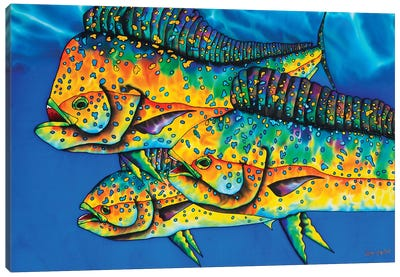 Caribbean Gold Canvas Art Print