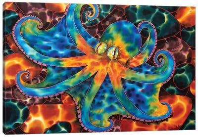 Caribbean Octopus - Stone Canvas Art Print