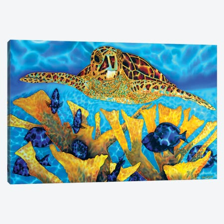 Hawksbill & Tangs Canvas Print #JBT26} by Daniel Jean-Baptiste Canvas Art