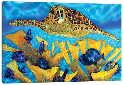 Hawksbill & Tangs Canvas Art Print