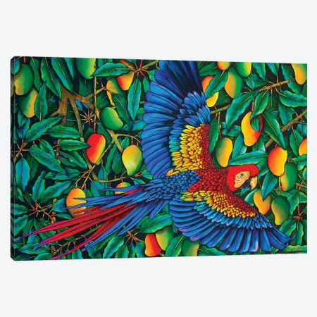 Macaw In Mango Tree 3-Piece Canvas #JBT41} by Daniel Jean-Baptiste Art Print