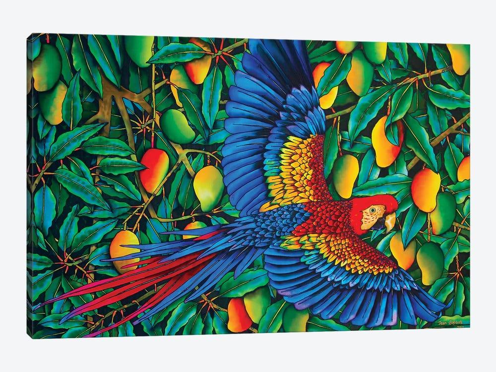Macaw In Mango Tree by Daniel Jean-Baptiste 1-piece Canvas Wall Art