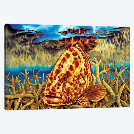 Nassau Grouper Canvas Print #JBT44} by Daniel Jean-Baptiste Canvas Artwork