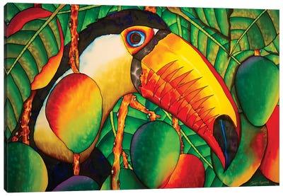 Paradise Toucan Canvas Art Print