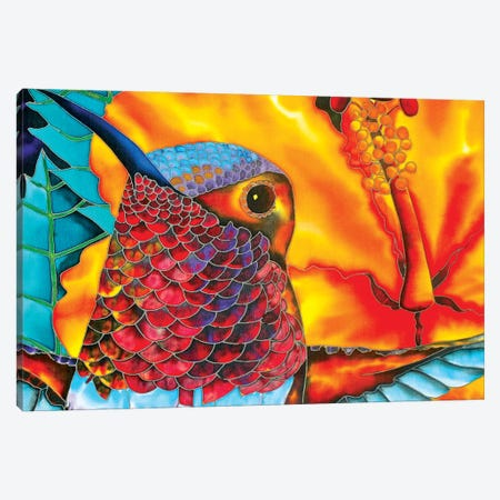 Rufous Hummingbird Canvas Print #JBT52} by Daniel Jean-Baptiste Canvas Art