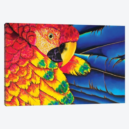 Scarlet Macaw Canvas Print #JBT53} by Daniel Jean-Baptiste Canvas Art