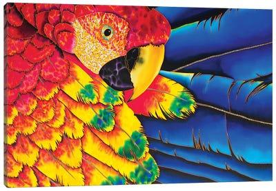 Scarlet Macaw Canvas Art Print