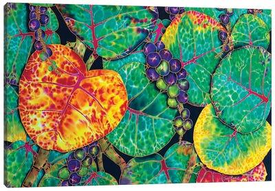 Seagrape Canvas Art Print