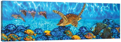 Akumal Canvas Art Print
