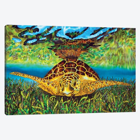 Turtle Grass Canvas Print #JBT60} by Daniel Jean-Baptiste Canvas Print