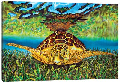 Turtle Grass Canvas Art Print