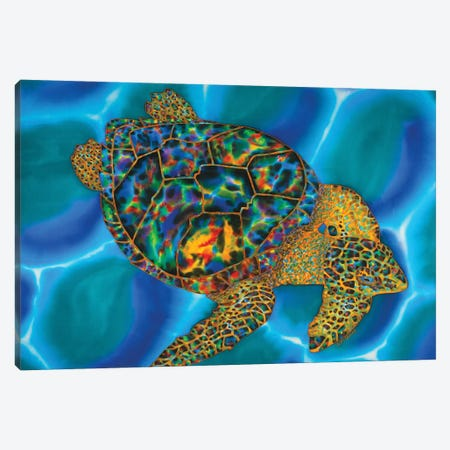 Caribbean Opal Canvas Print #JBT65} by Daniel Jean-Baptiste Canvas Art