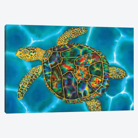 Rainbow Opal Turtle Canvas Print #JBT67} by Daniel Jean-Baptiste Canvas Artwork
