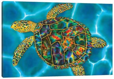 Rainbow Opal Turtle Canvas Art Print