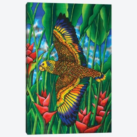 Saint Vincent Amazon Canvas Print #JBT69} by Daniel Jean-Baptiste Art Print
